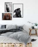 1200x1500-Animals3