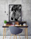 1200x1500-Zebras-2
