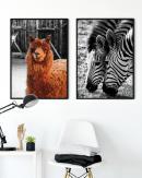 1200x1500-Animals1