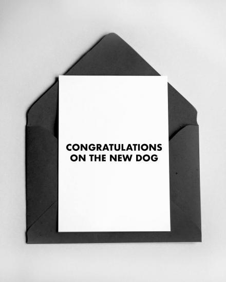 1200x1500-Card-Dog1