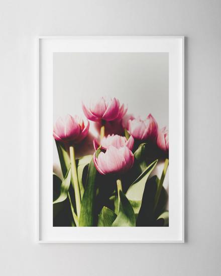 1200x1500-Tulips