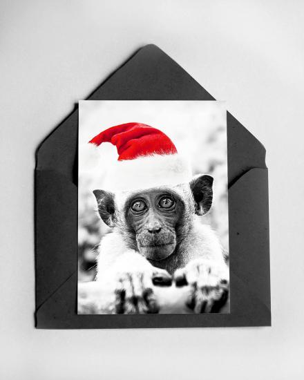 1200x1500-Card-Monkey