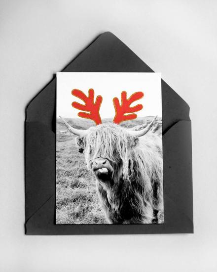 1200x1500-Card-Cow