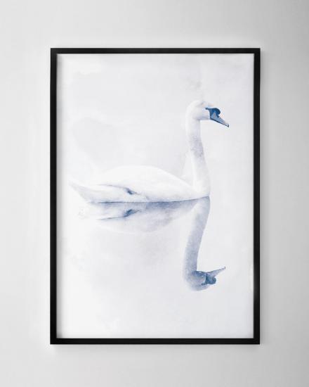 1200x1500-Duck